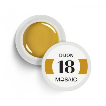 18. Dijon