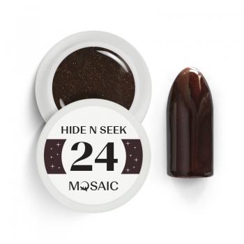 24. Hide N Seek