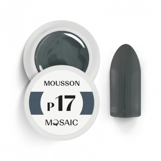 P17. Mousson
