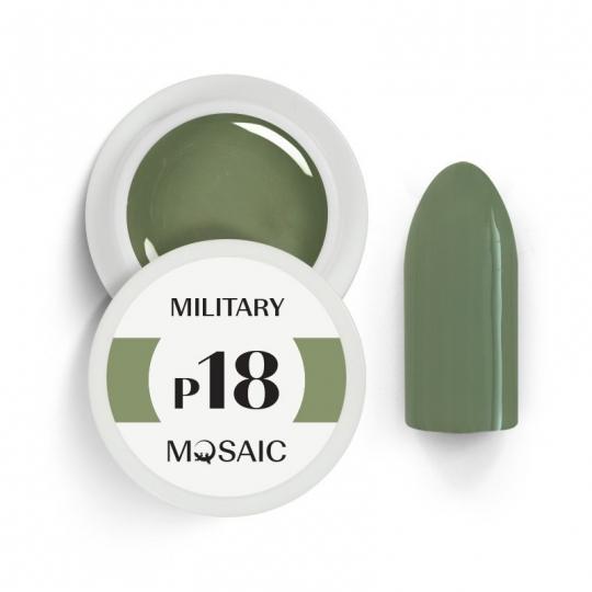 P18. Military