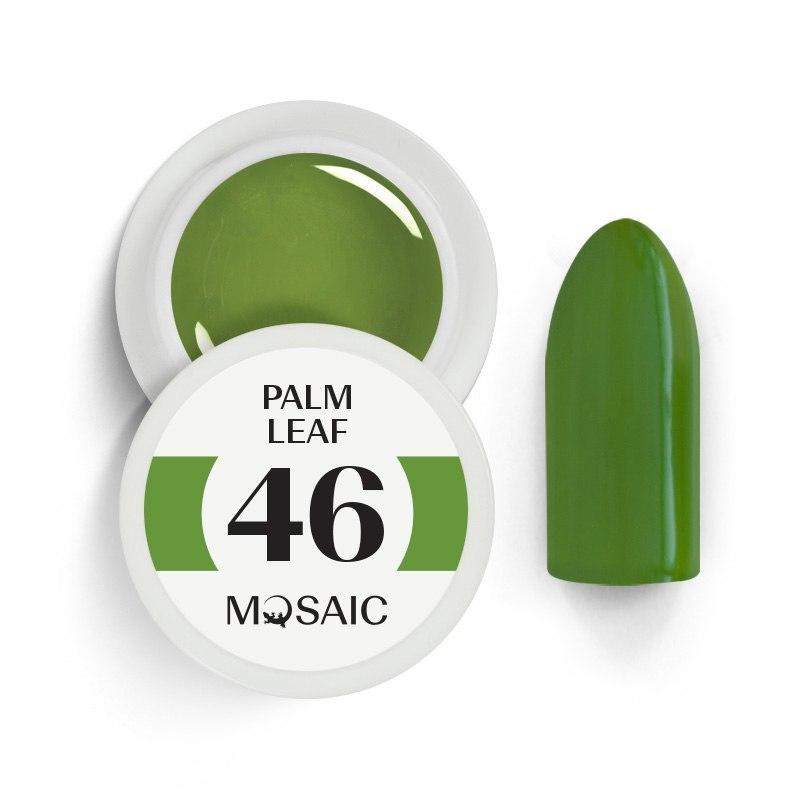 46. Palm leaf