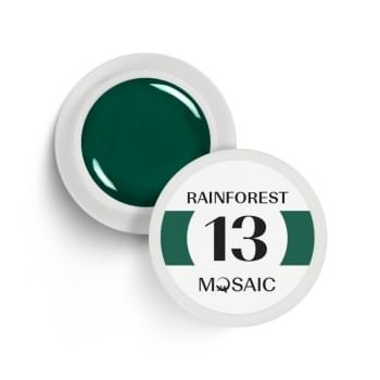 13. Rainforest