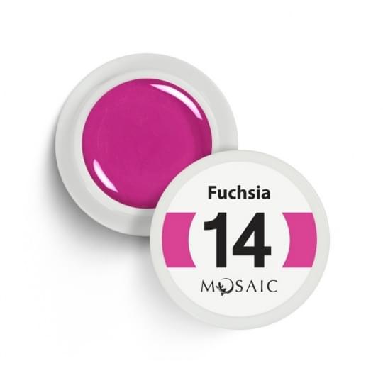 14. Fuchsia