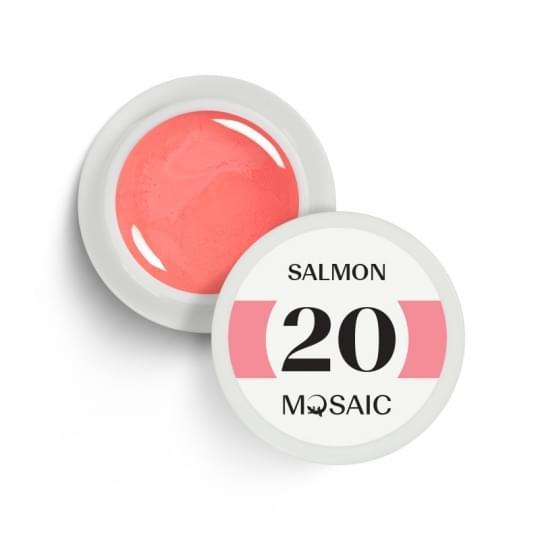 20. Salmon