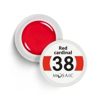 38. Red cardinal